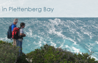 http://www.plettenbergbayinfo.co.za/activities/hiking-trails/