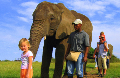 elephantsanctuary_featured
