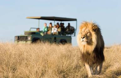 plettgamereserve_featured