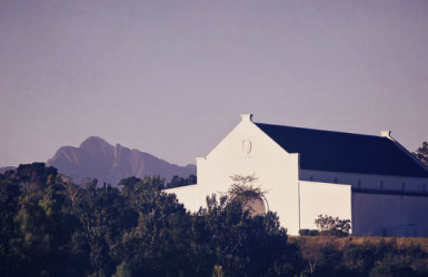 winelands-2