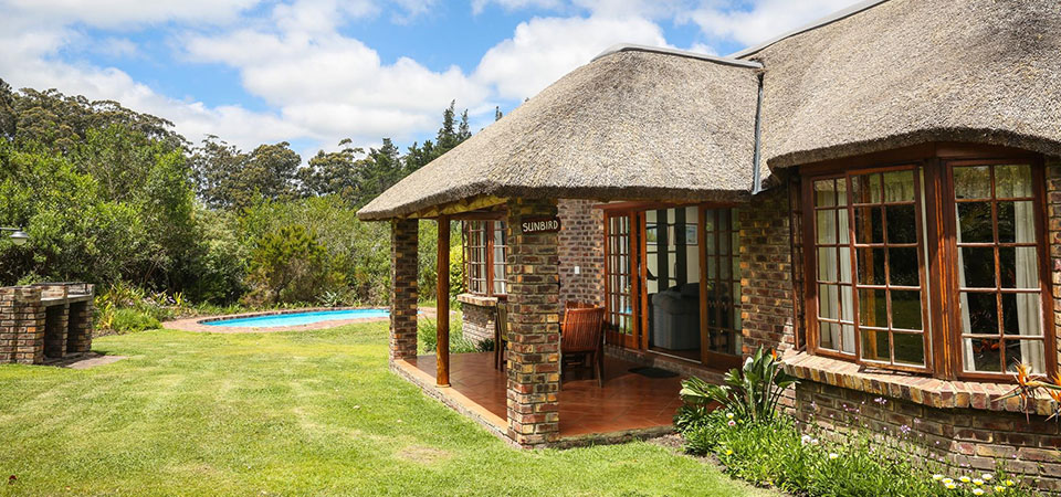 Plett-Coral-Tree-Cottages
